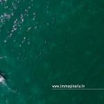 Fotografia aerea di un motoscafo nelle acque del lago di Garda