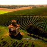 Ripresa aerea dei vigneti Mirabella in Franciacorta